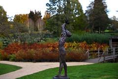 Savill Garden 30 October 2019 028 (paul_appleyard) Tags: sunrise jonathan hateley sculpture savill garden october 2019