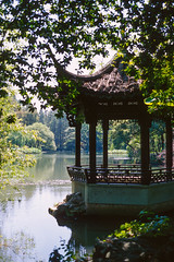 Lotus Gazing Pavilion (Taomeister) Tags: ektachromee100 contaxg2 kodakfilm 曲院 杭州 westlakescenicarea hangzhou 西湖景区 kodake100