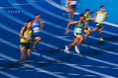 D69_1764 (brook1979) Tags: 全國運動大會 全運會 2019 桃園 運動會 台灣 運動 比賽 田賽 競賽 sport taiwan taoyuan