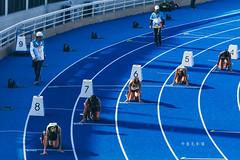 D69_1570 (brook1979) Tags: 全國運動大會 全運會 2019 桃園 運動會 台灣 運動 比賽 田賽 競賽 sport taiwan taoyuan