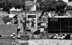 DSC00551 (O KDUKO) Tags: araraquara blackandwhite blackandwhitephotography pictureoftheday blackandwhitephoto photography bnwcaptures monochrome monochromatic bw bwstyles artgallery visualart bwphotooftheday photoshoot bwstyleoftheday aesthetics streetphotography arts