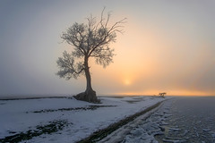 #ural,  #пейзажи, #природа, #панорама, #красота, #холмы, #натура, #восход, #осень, #горы, #люблюфото, #Урал, #березки, #Магнитогорск, #лучи, #южныйурал, #photorussia, #etonashural, #uralinsta, #foto_ural, #russ_beauty, #natureofrussia, #natureofrussiaru, (ЛеонидМаксименко) Tags: natureofrussia красота лучи осень люблюфото горы природа березки красиваяроссия пейзажи восход natureofrussiaru uralinsta панорама etonashural southural russbeauty магнитогорск photorussia fotoural натура холмы урал южныйурал ural