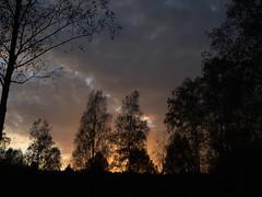 014285 2019 23 Oktober Sunset (Photo made by Reinier Mensink) (mensinkr) Tags: forest sunset bomen zonsondergang nature natuur belgie ardennen beautiful color solei solar sonne inspiredbylove