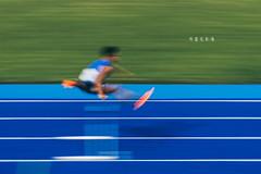D69_1695 (brook1979) Tags: 全國運動大會 全運會 2019 桃園 運動會 台灣 運動 比賽 田賽 競賽 sport taiwan taoyuan