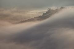 Der Tag erwacht (Rafael Zenon Wagner) Tags: morgen morning mood stimmung erwachen nebel sachsen saxony germany deutschland nikon d810 200mm