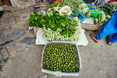 Nepal_2018_4938 (Robert Kielak/Photographer and filmmaker) Tags: agriculture asia asian bazaar business cabbage cauliflower coconutdrink coconutmilk coconuts color colorful editorial eggplant farmproducts farmersproduce food fresh fruit green greengrocer greengrocery harvestvegetables healthy local locallygrown man market marketplace okra organic portrait radish sale sell seller shop stall street streetlife streetvendors traditional typical vegetable vegetables vendor nepal kathmandu