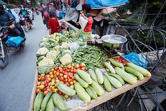 Nepal_2018_4926 (Robert Kielak/Photographer and filmmaker) Tags: agriculture asia asian bazaar business cabbage cauliflower coconutdrink coconutmilk coconuts color colorful editorial eggplant farmproducts farmersproduce food fresh fruit green greengrocer greengrocery harvestvegetables healthy local locallygrown man market marketplace okra organic portrait radish sale sell seller shop stall street streetlife streetvendors traditional typical vegetable vegetables vendor nepal kathmandu