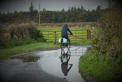 Cornering (Brian Cairns) Tags: ncn7 sutrans dumfries annan thenationalbyway caerlaverock solway cycling brianbcairns scotland