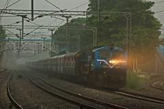 JP - SC Exp. (BV Ashok) Tags: nwr jpsc jaipursecunderabad weekly express 19713 cvb cavalrybarracks scr swr kjm krishnarajapuram wdp4b emd 40017