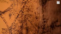 """ANRU2 @ GAGARINE @ Ivry-sur-Seine La barre d'immeubles rouge brique en forme de T a déjà été """"grignotée""""depuis 2 mois... Dans quelques temps, un nouvel écoquartier remplacera les quelque 380 lgts que constituait la cité HLM (memoire2cite104) Tags: collectif bâtiments zone council massive urbanisation glorieuses territoire soçiale anru planification aménagement mémoire2cité urbanisme zup quartiers industrialisation logements ville copropriété ensemble grand grandensemble grandsensembles urbaine oph béton appartement habitat habitation europe archive archives ina histoire housing french banlieue suburb renouvellement urbain rénovation requalifiquation monde réhabilitation préfabriqué construction archi architetcte constructions métropole cité2france soçiaux logement soçial barre barres opération bloc cité architecture bâtiment btp ouvrage mémoire2ville modern résidentiel residential flats apartment social"""
