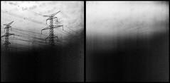 30900009 (Robby Reis) Tags: 120film mediumformatfilm blackandwhitephotography kodaktrix320 rolleiflexsl66 trix320 diptych