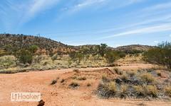 74 Hillside Gardens, Desert Springs NT