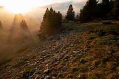 Limite lumière et brouillard (Samuel Raison) Tags: hautsplateauxduvercors vercors paysage landscape ombres shadows lumière light nature naturephotography nuages clouds foggy brumes nikon nikond800 nikon282470mmafsg