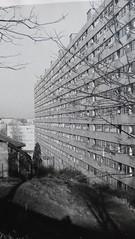 Loti89 / 42 St-Etienne Sud-Est @ Montchovet (Citées modernes de Beaulieu), la tranche numéro 3, pour 1266 lgts HLM, une construction de 1962 à 64, 7 barres d' immeubles) Architectes: Hur Edouard - Gouyon Henri - Clément - Mauhaudier) (memoire2cite104) Tags: collectif bâtiments zone council massive urbanisation glorieuses territoire soçiale anru planification aménagement mémoire2cité urbanisme zup quartiers industrialisation logements ville copropriété ensemble grand grandensemble grandsensembles urbaine oph béton appartement habitat habitation europe archive archives ina histoire housing french banlieue suburb renouvellement urbain rénovation requalifiquation monde réhabilitation préfabriqué construction archi architetcte constructions métropole cité2france soçiaux logement soçial barre barres opération bloc cité architecture bâtiment btp ouvrage mémoire2ville modern résidentiel residential flats apartment social