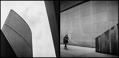 30900005 (Robby Reis) Tags: 120film mediumformatfilm blackandwhitephotography kodaktrix320 rolleiflexsl66 trix320 diptych