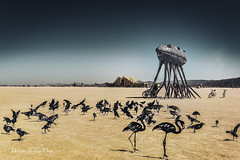 Corpus, The Temple, Birds (WayneToTheMax) Tags: burning man 2019 nikon d750 desert festival art installation temple corpus metal birds landscape climb