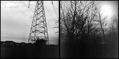 30900010 (Robby Reis) Tags: 120film mediumformatfilm blackandwhitephotography kodaktrix320 rolleiflexsl66 diptych trix320