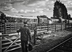 Great Central Railway Loughborough Leicestershire 3rd November 2019 (loose_grip_99) Tags: greatcentral railway railroad rail train loughborough leicestershire eastmidlands england uk steam diesel engine locomotive lms stanier 8f 280 48305 blackwhite noiretblanc d5185 class25 37714 class37 08 preservation transportation gassteam uksteam trains railways footplate november 2019