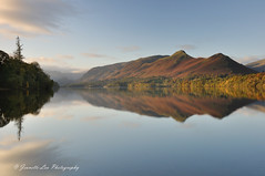 Early Morning Light (jeanette_lea) Tags: landscape united kingdom isthmus bay derwentwater keswick the lake district cumbria sunrise dawn lowlight mist autumn colours catbells trees fells water reflections sky clouds