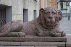 IMGP2460 (PahaKoz) Tags: ленинград санктпетербург город осень leningrad stpetersburg city autumn пейзаж городской landscape cityscape скульптура sculpture лев