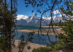 Grand Teton National Park (David Ruiz Luna) Tags: westernparks16 grandteton grandtetonnationalpark nationalpark usa america mountains lake nature naturelovers scenics outdoors landscape travelphotography wyoming moran estadosunidos roadmovie thetetonrange blue sky clouds water green trees summer lago tree light travel forest beautiful scenery naturallight naturephotography trip unitedstates beautyinnature viaje traveldestinations naturaleza touraroundtheworld paisaje escenario