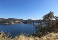 California, New Melones Lake (Traveling with Simone) Tags: sierranevadamountains montagnes montagne sierranevada newmeloneslake lake lac bridge pont hwy49