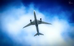 TUI | G-TUIM | Boeing 787-9 | BGI (Terris Scott Photography) Tags: aircraft airplane aviation plane spotting nikon d750 f28 travel barbados jet jetliner tui fly 7879 tamron 70200mm di vc usd g2 sky grass cockpit