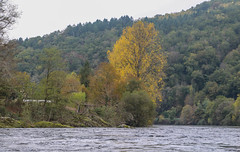 IMG_7503 (Mal Grey) Tags: dordogne canoeing argentat beaulieu high water