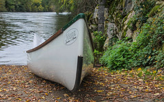 IMG_7491 (Mal Grey) Tags: dordogne canoeing argentat beaulieu high water