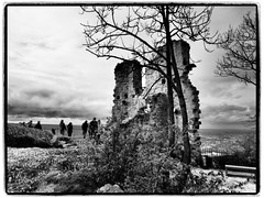 Burgruine Drachenfels (1elf12) Tags: drachenfels königswinter rhein berg mountain germany deutschland burg castle ruine ruin