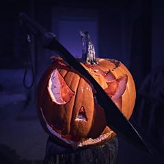 End of Halloween (Jtofs85) Tags: godox strobist switzerland halloween pumpkin machete fear flash a99m2 sony 20mm f28 perspective courge machette création