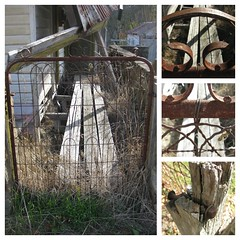 A Rusting Gateway to the Past - Blackwood (raaen99) Tags: freestyleonthefifth fotf fff flickrfamousfive beautyindecay beauty decay decaying old 1900s edwardian edwardianarchitecture dereliction edwardianbuilding edwardianhouse edwardiancottage edwardianstyle weathered weatherboard wood wooden iron rusted corrugatediron collage house home cottage domesticarchitecture edwardiania twentiethcentury 20thcentury building architecture victoriangoldrush goldrush goldrushera corrugatedironroof verandah roof walls fence gate gateway window door blackwood victoria australia grounds grass weeds autumn fall autumnal autumnalcolours