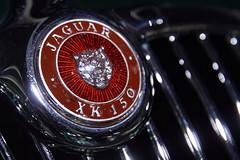 Jaguar XK 150 (markus_kaeppeli) Tags: macromondays brandandlogos autozürich
