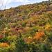 autunno - autumn
