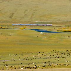 M62-xxx UBTZ, 302, Tunkh – Buyant (cz.fabijan) Tags: railway železnice train vlak bahn zug lokomotiva locomotive motorová diesel sergej m62 ubtz tunkh mongolsko mongolia mn ulaanbaatartömörzam 302 улаанбаатартөмөрзам тунх м62 убтз