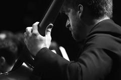 Contrabajo íntimo (Guillermo Relaño) Tags: mendelssohn sueño noche verano especial pqee ¿porquéesespecial camerata musicalis teatro nuevoapolo madrid guillermorelaño sony a7 a7iii a7m3 contrabajo orquesta orchestra byn bw blancoynegro blackandwhite