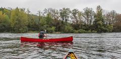 IMG_7504 (Mal Grey) Tags: dordogne canoeing argentat beaulieu high water