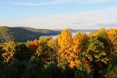 Quabbin Autumn (Piedmont Fossil) Tags: quabbin reservoir massachusetts autumn fall leaves color tree lake