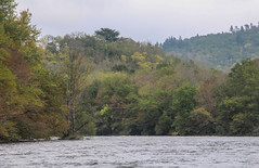 IMG_7502 (Mal Grey) Tags: dordogne canoeing argentat beaulieu high water