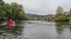IMG_7492 (Mal Grey) Tags: dordogne canoeing argentat beaulieu high water