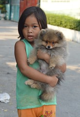 girl with cute dog (the foreign photographer - ฝรั่งถ่) Tags: cute girl child dog khlong lard phrao portraits bangkhen bangkok thailand nikon d3200