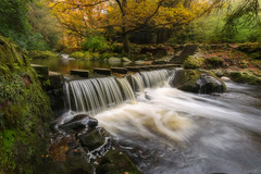 Stepping Stones (peter_beagan) Tags: tollymore autumn steppingstones forest countydown northernireland waterfall river colours stones trees longexposure canon 5diii irish ireland