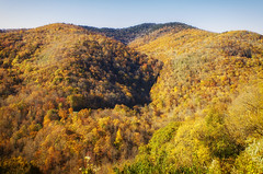Fall Blue Ridge Parkway 2019 9 (rschnaible) Tags: autumn fall outdoor landscape blue ridge parkway north carolina mountains color colorful the south
