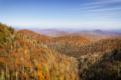 Fall Blue Ridge Parkway 2019 6 (rschnaible) Tags: autumn fall outdoor landscape blue ridge parkway north carolina mountains color colorful the south