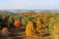 North View (Piedmont Fossil) Tags: quabbin reservoir massachusetts autumn fall leaves color tree lake