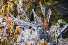 Autumn Ice (rschnaible) Tags: autumn fall outdoor landscape blue ridge parkway north carolina mountains color colorful ice the south