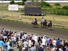 Number Five wins it (knightbefore_99) Tags: hastings racecourse vancouver eastvan cool awesome bet betting horse cheval speed sun sol sunny bc day august five win
