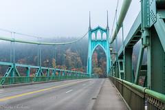 Foggy morning (Maria Echaniz) Tags: foggy fall forestpark stjohns stjohnsbridge bridge portland pdx foliage forest autumn road green oregon