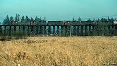 A Whiteson Saturday (C.P. Kirkie) Tags: sherwood oregon southernpacific southernpacificoregondivision sp sporegondivision spbrooklynsubdivision spnewbergbranch sherwoodoregon sd9 cadillac emd whitesonflyer local freighttrain trains railroads