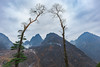 _MG_3273.0211.Sủng Máng.Mèo Vạc.Hà Giang. (hoanglongphoto) Tags: asia asian vietnam northvietnam northeastvietnam northernvietnam nature landscape scenery vietnamlandscape vietnamscenery hagianglandscape sky mountain flanksmountain tree canon canoneos5dmarkii đôngbắc hàgiang đồngvăn thiênnhiên phongcảnh phongcảnhhàgiang thiênnhiênhàgiang núi sườnnúi cây núiđá bầutrời sủngmáng